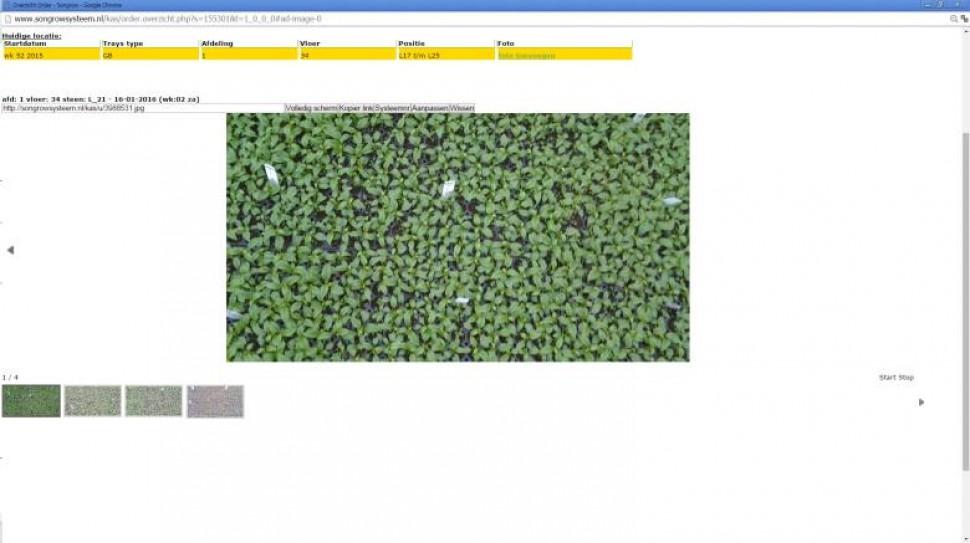 3-3 fotos per partij.jpg