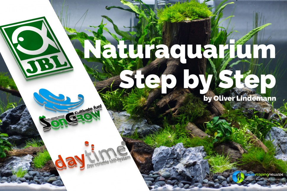 Naturaquarium step by step jbl_scape_Start.jpg