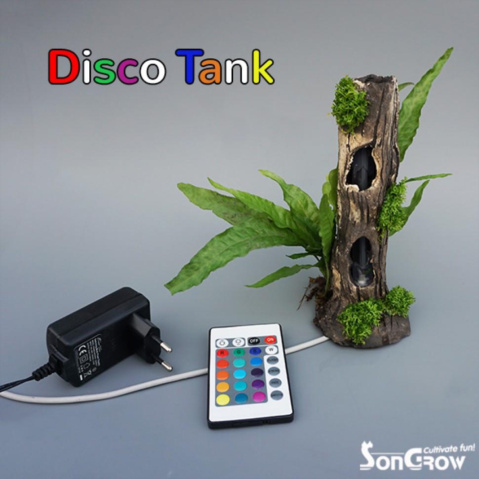 Disco Tank.jpg